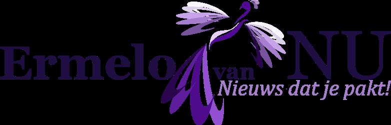 Ermelo-van-Nu-logo-snackbar-Ermelo